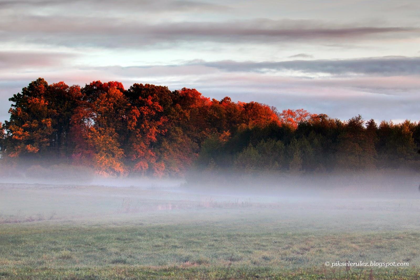 jesień, wieś, Polska, Bory Tucholskie, Agata Raszke, fotografia,