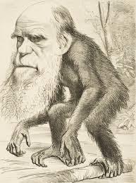 Evolution is a Lie - Intelligent Design is the Truth! Monkey-darwin