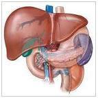 pengobatan hepatitis b