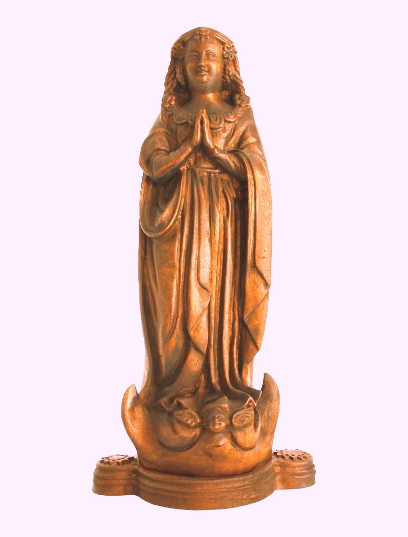 Senhora da Conceição aparecida em sua imagem para o Brasil