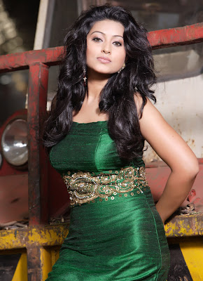 Sneha Hot Amazing Photoshoot Photos
