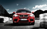 2013 Bmw x6 picture