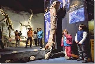Saintis jumpa tulang dinosaur