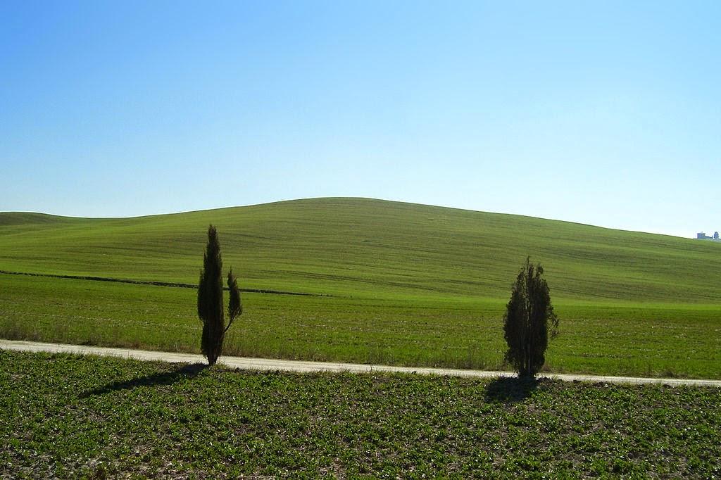 Toscana con niños