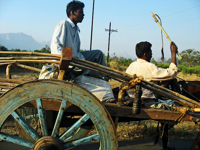 two men riding bullock cart on country road