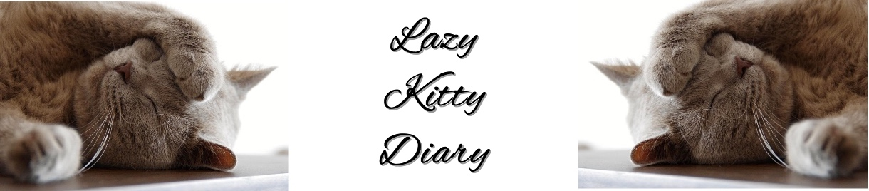 Lazy Kitty Diary