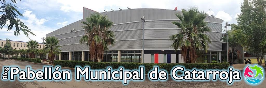 Pabellon municipal de catarroja for Piscina cubierta catarroja