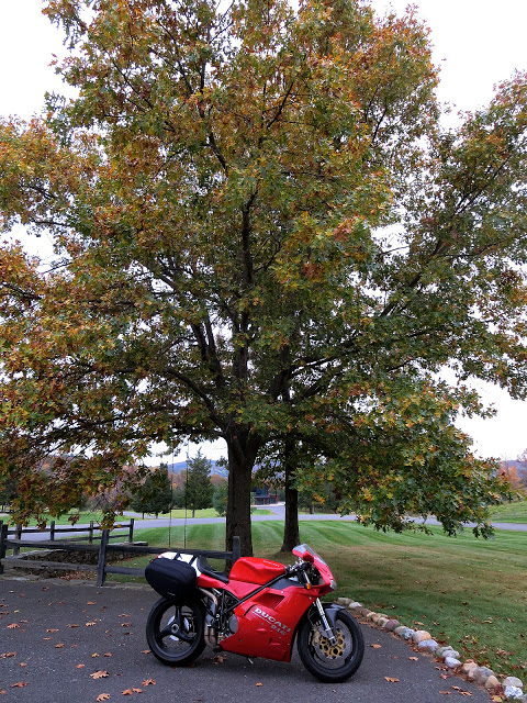 Ducati 916 Upstate New York