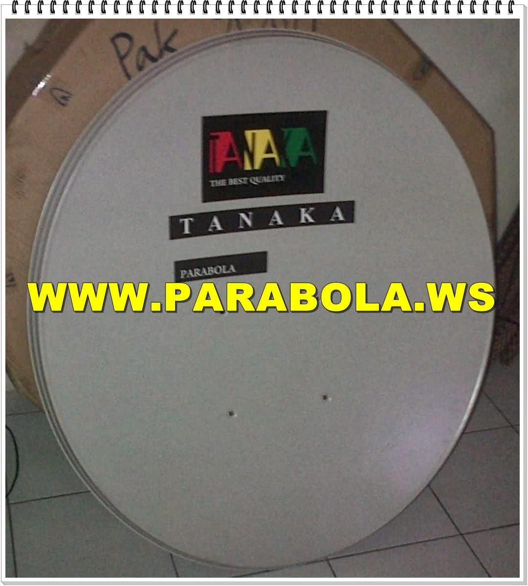 antena parabola offset solid 100 cm tanaka ke-1
