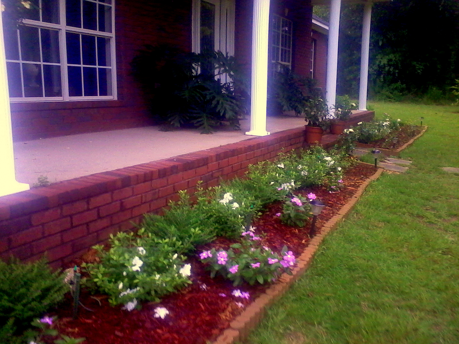 Alabama Rose and Flower Garden from a Non Green Thumb  Mexican