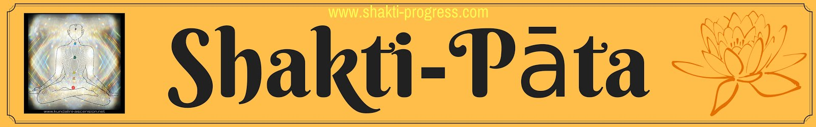 Shakti Progress