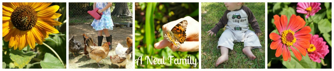 A Neal Family