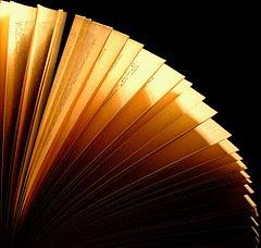 Lectura diaria del blog