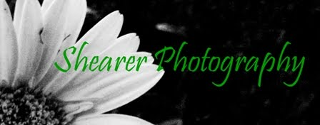 Shearer Photography