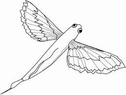 Free Coloring Flying Fish Printable Pages Flying Fish Coloring Page