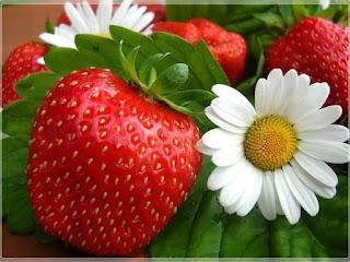 fraula-φράουλα λικέρ-pota-ποτά