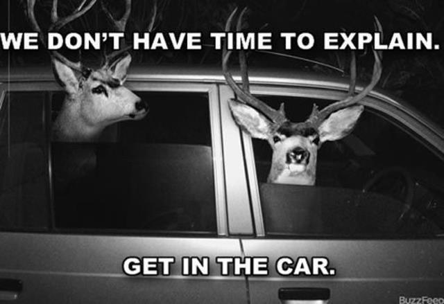 non abbiamo tempo di spiegare, salta in macchina