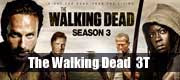 The Walking Dead 3 temporada Download