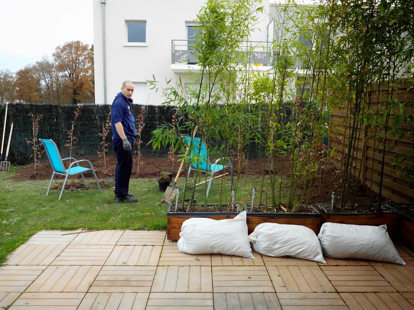 Mr R, haie, jardin, jardinage, bullelodie