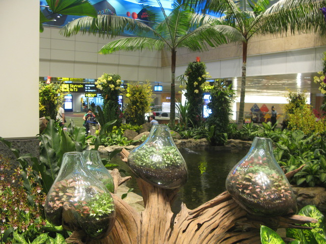 Sarisaringketektyur indoor garden changi airport singapore for Indoor gardening singapore