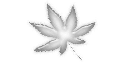 traffic, trafficking, Powder Cocaine,  Marijuana, Methamphetamine, Heroin, Oxycodone, Crack Cocaine