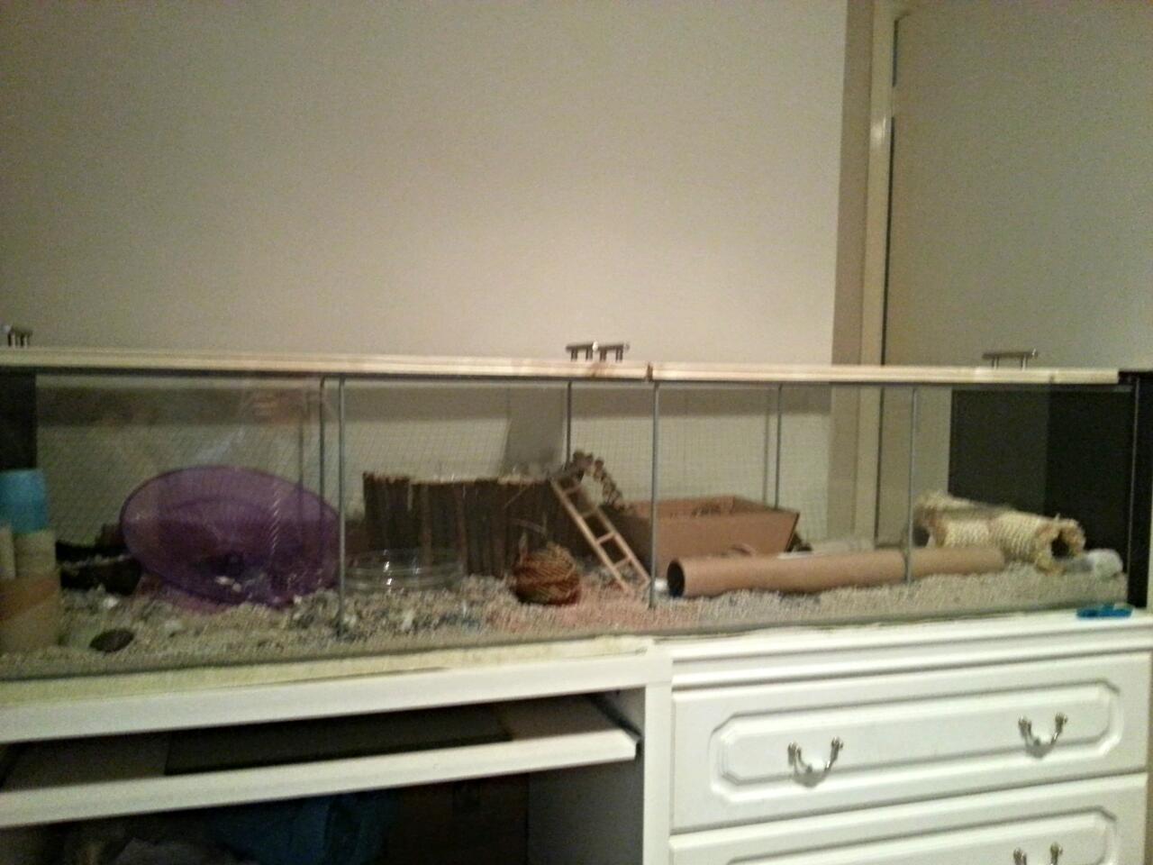 lariath live a little hamster diy ikea detolf cage lid. Black Bedroom Furniture Sets. Home Design Ideas