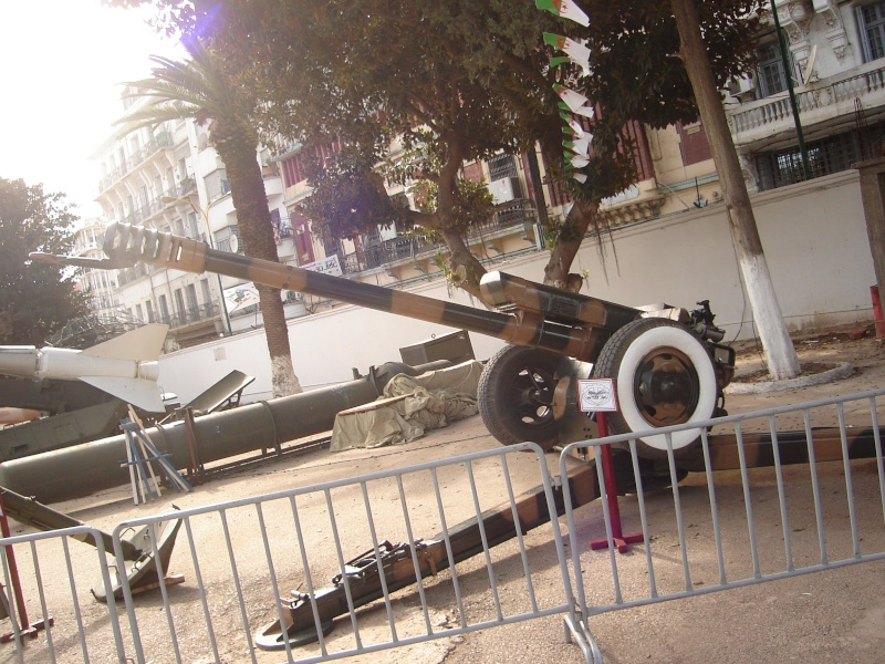 Fuerzas Armadas de Argelia Dsc01224