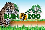 Viernes 25: Salida a Buin Zoo