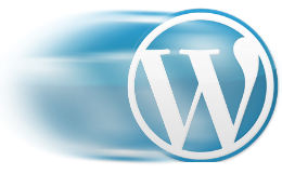 Best Plugins To Make Your Wordpress Blog Faster.