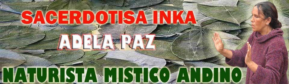 Sacerdotisa Inca