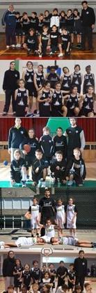 Minis OFC 2013/2014