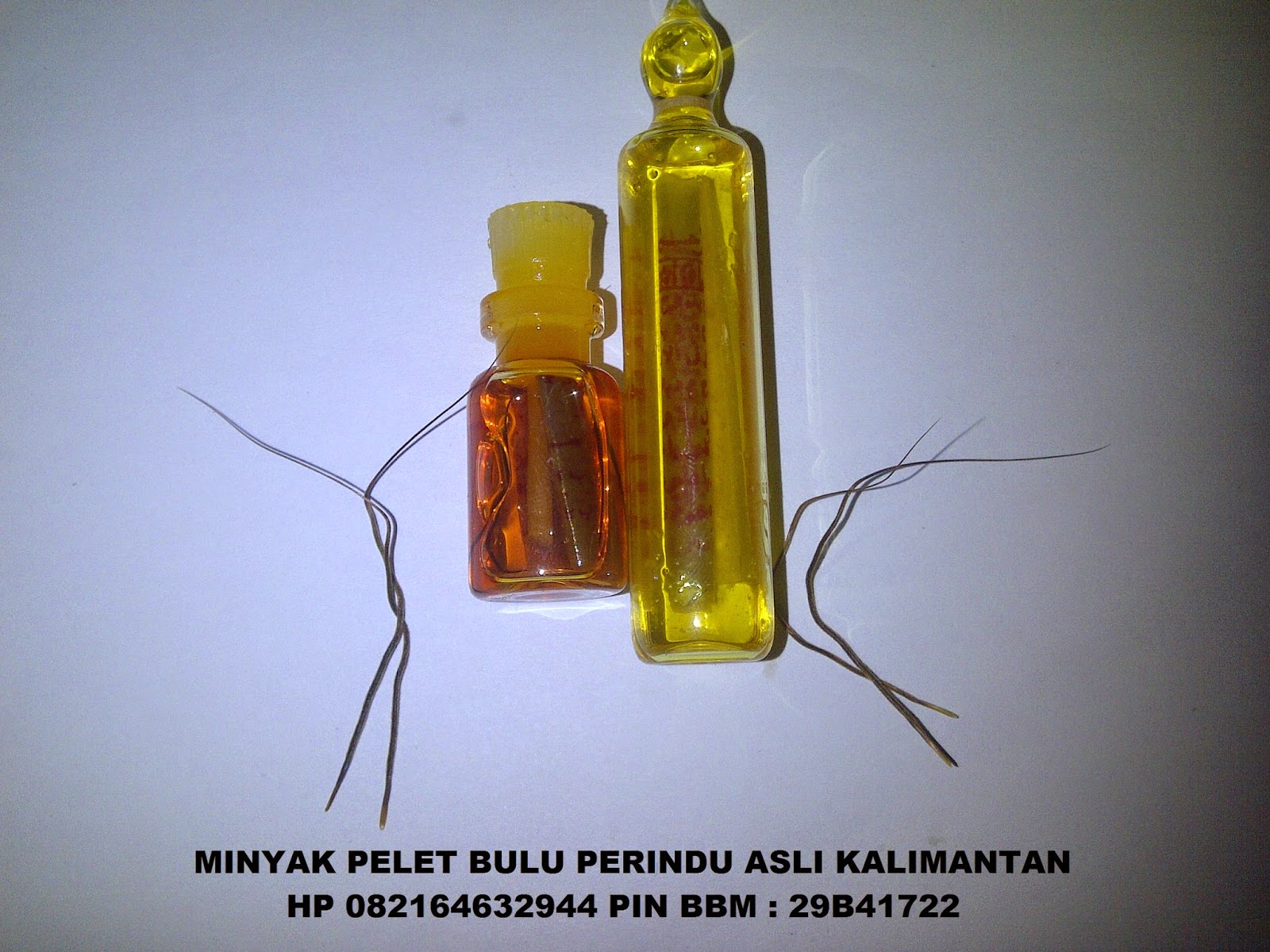 http://4.bp.blogspot.com/-PEF61R5rezQ/VTkNkfwJTbI/AAAAAAAALbY/zGYu_f2q_qU/s1600/url.jpg