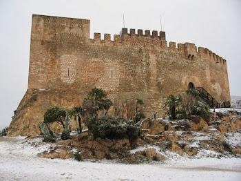 Castillo Petrel