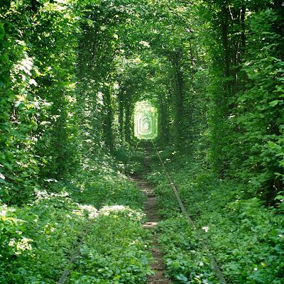 El tunel de la felicidad