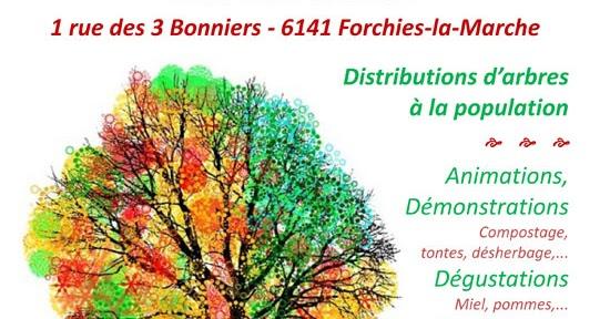 pcdn de fontaine l 39 ev que 28 novembre journ e de l 39 arbre ann e du charme. Black Bedroom Furniture Sets. Home Design Ideas