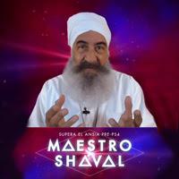 ¿Ansioso por la llegada de PS4? El maestro Shaval puede ayudarte