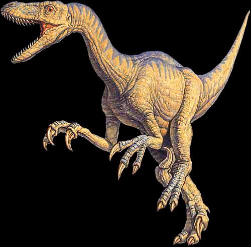 Imagen del Velociraptor