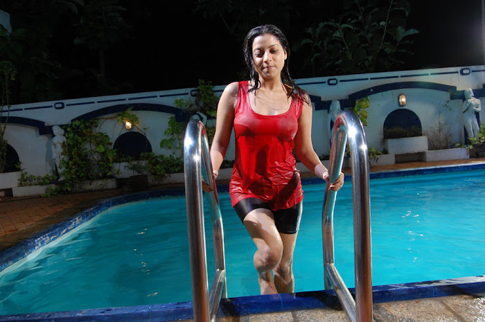 keerthi chawla from allam bellam 2 movie, keerthi spicy actress pics