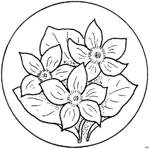 Mandalas Para Pintar Mandalas De Flores