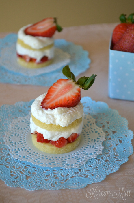Mini Japanese Strawberry Shortcakes ~ Korean Mutt