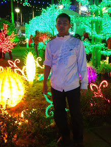 LIGHT CITY,PESTA PULAU PINANG