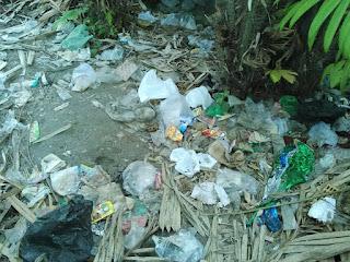 Sampah dibuang di kebun
