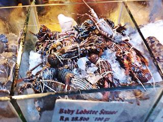 Bandar Djakarta - Baby Lobster