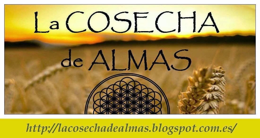 Blog La Cosecha de Almas