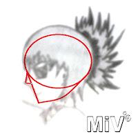 miv3d desenho perfil anime completo