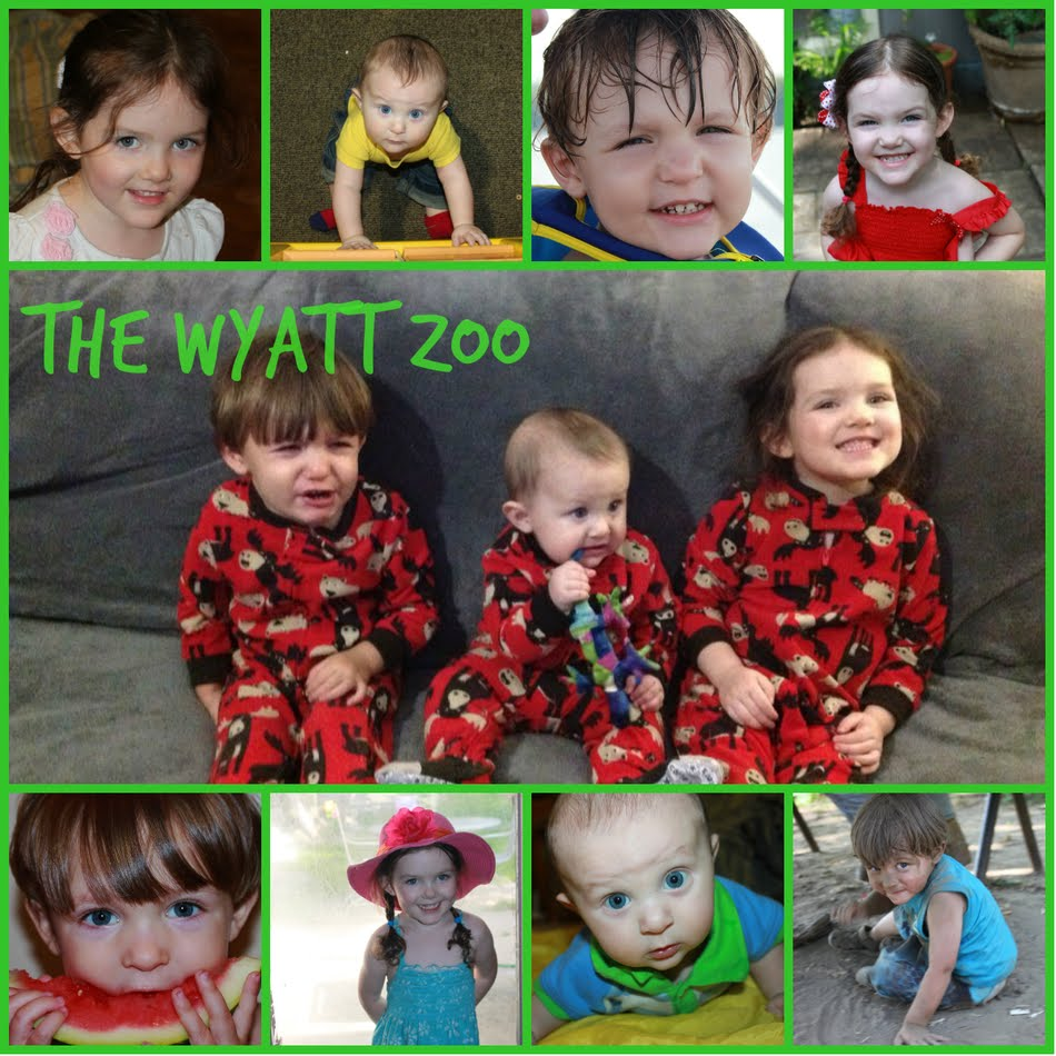 The Wyatt Zoo