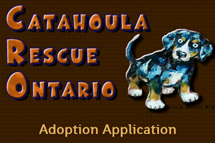 Adoption Application Form Ontario