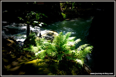http://www.journey-ni-ikoy.com/2012/12/hagimit-falls-at-island-garden-city-of.html