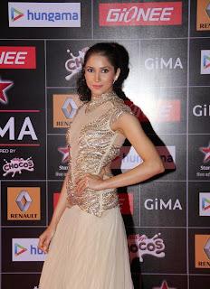 Bollywood Actress Celebrities Pictures at GIMA Awards Red Carpet  23.JPG