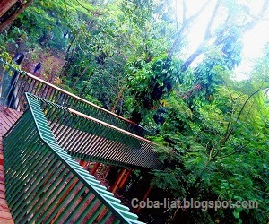 Hutan Kota Terindah dan Bersih